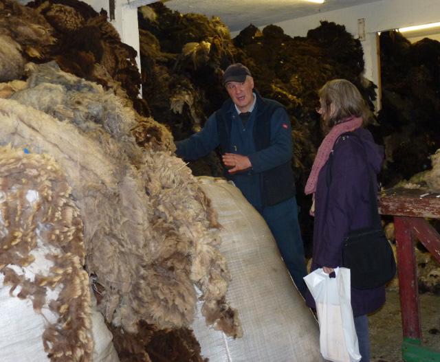 the coloured fleece