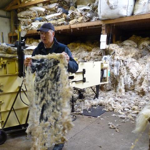 Very Fine fleece