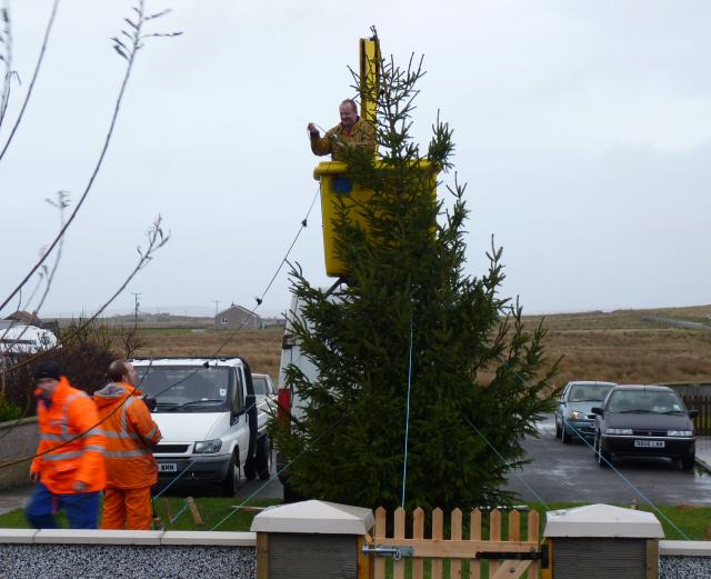 Flotta tree getting lights