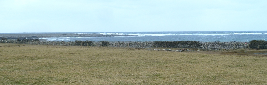 North Ronaldsay east dyke down