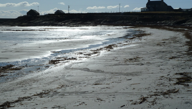seal tracks and Nouster