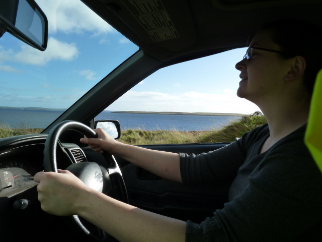 Elly driving