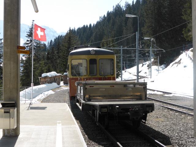 009 the train