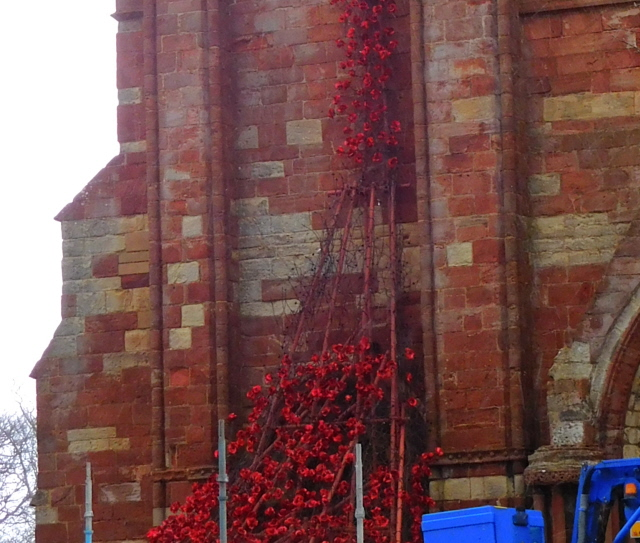 Kirkwall Weeping Window 003