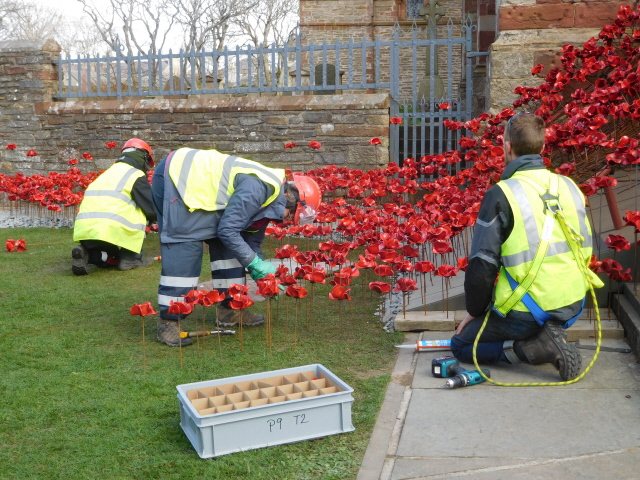 Kirkwall Weeping Window 005