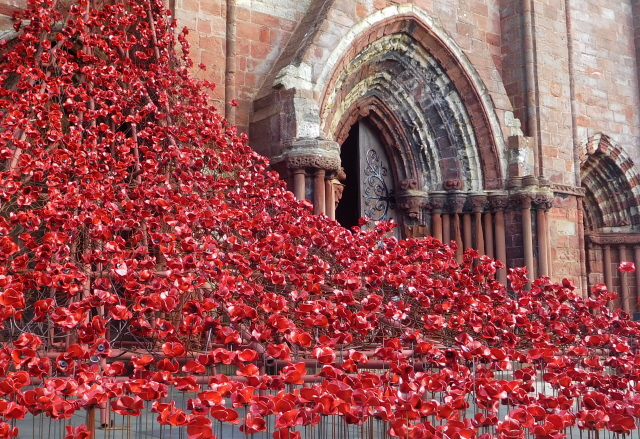 Kirkwall Weeping Window 008