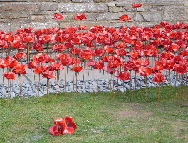 Kirkwall Weeping Window 009